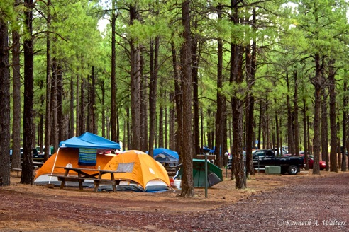 Camping at Pickin in the Pines music festival Flagstaff